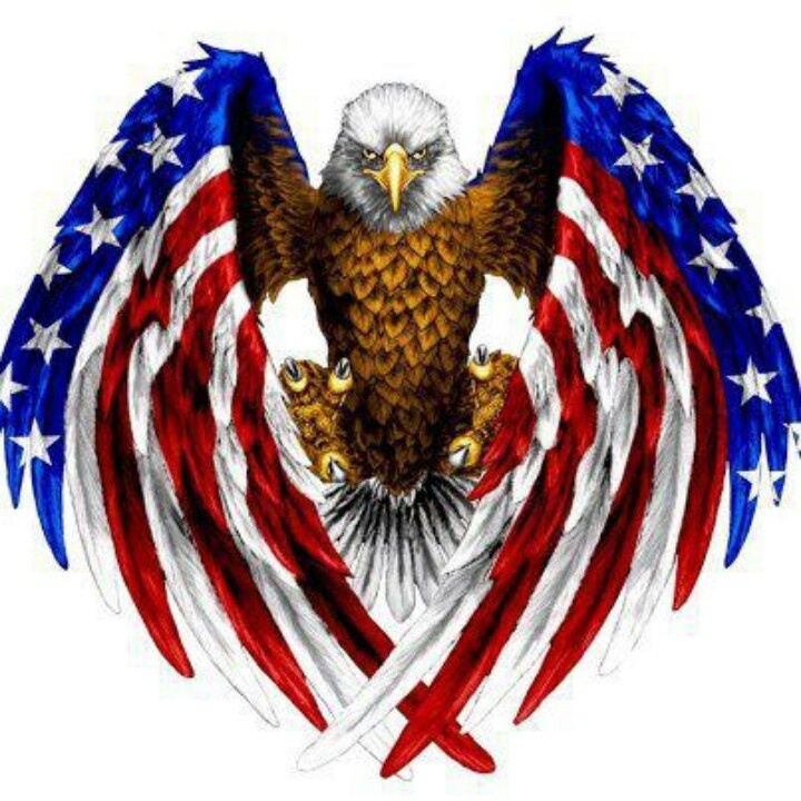 8d77ae45ae0498e6b51dd2eac224d8af  american flag eagle american pride