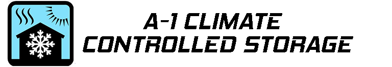 A 1 logo
