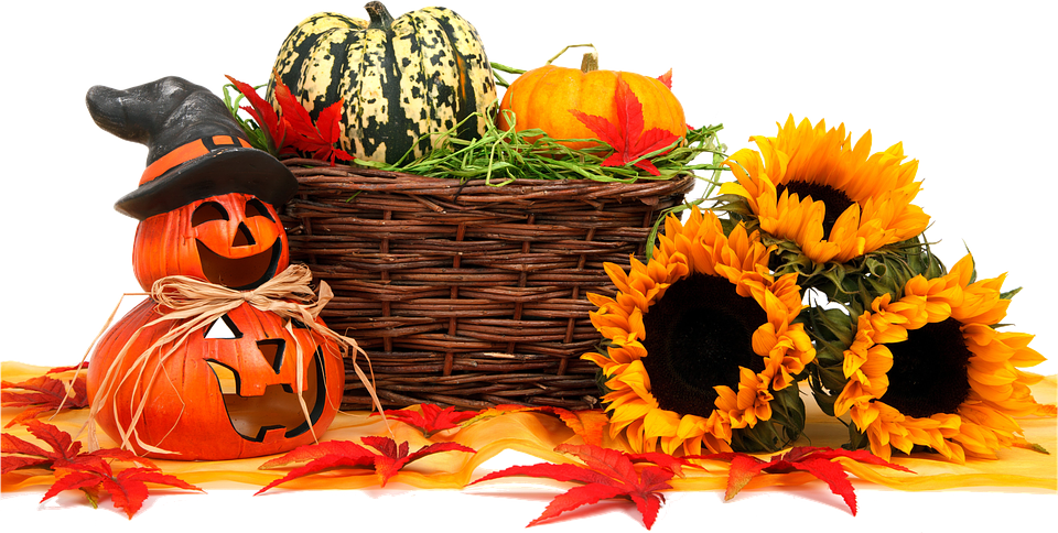 Happy Fall from Carbondale Self Storage!